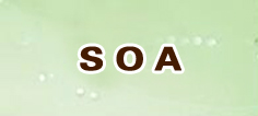 SOA丨アナムネシス アカウント 通貨購入