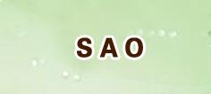 SAO メモリー デフラグ RMT 通貨購入