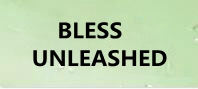 BLESS UNLEASHED 通貨購入